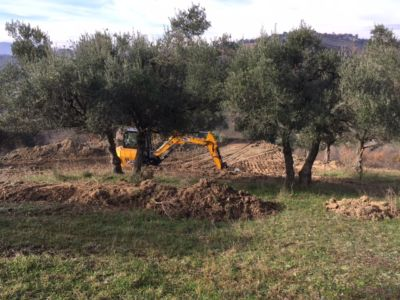 Excavation 8 on site of new construction in Le Marche