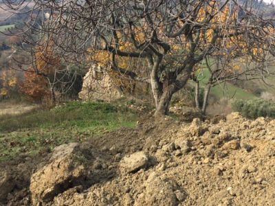 Ruin behind Fig on site of new construction in Le Marche