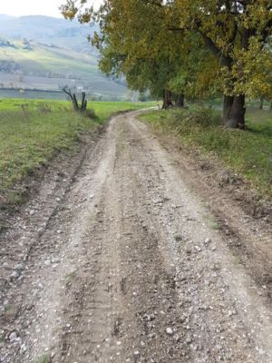 Access road 1 on site of new construction in Le Marche