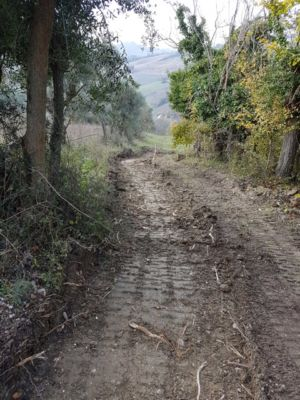 Access road 7 on site of new construction in Le Marche