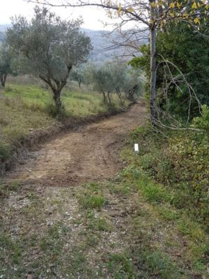 Driveway access looking downhill on site of new construction in Le Marche