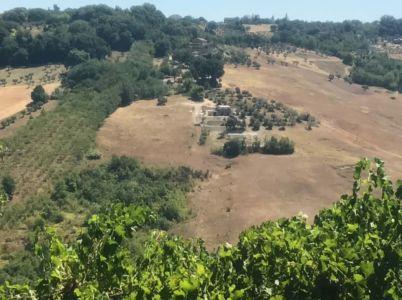 Casa Avventura from Across the Valley at Le Foglie Ridenti