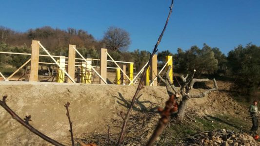 Cherrry fig and house at new house construction site in Le Marche