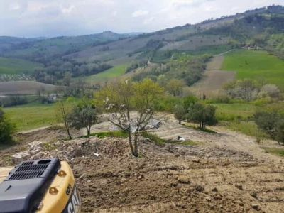 Cherry Front and Center at new house construction site in Le Marche