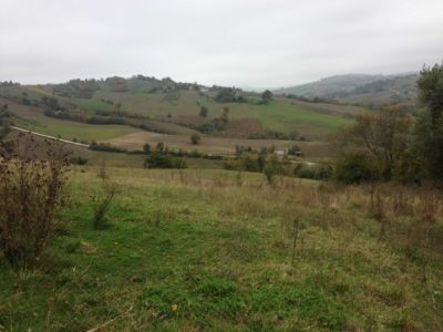 View from pool location on site of new construction in Le Marche