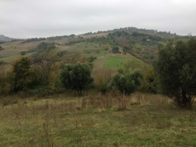 View across valley on site of new construction in Le Marche