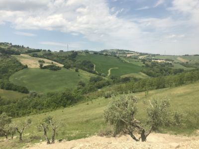 The View NW  at site of a new house being built in Le Marche, Italy