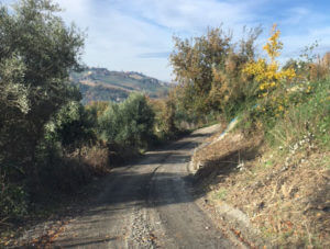 Photos of the construction of an access road to a property in Le Marche, Italy