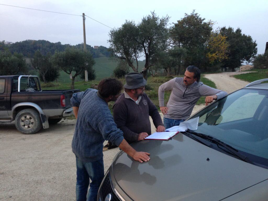 neighbors in Le Marche