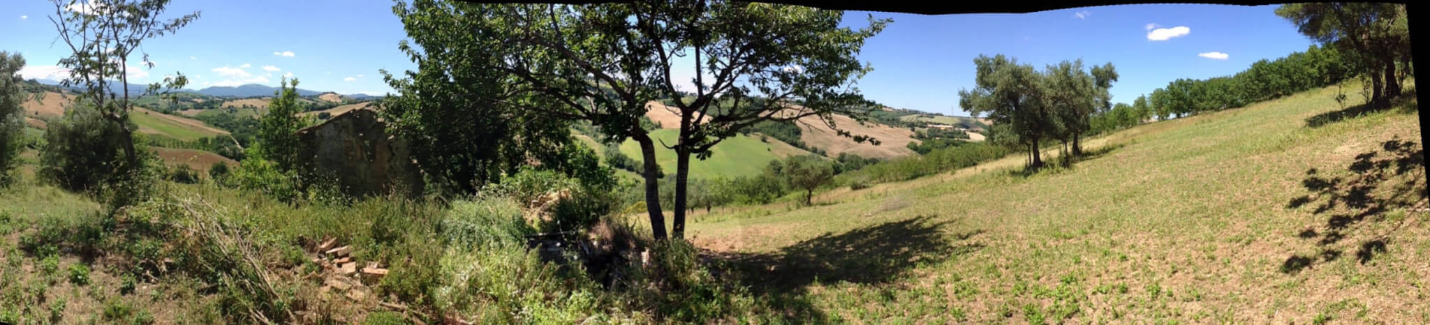 panorama of site of new construction in Marche