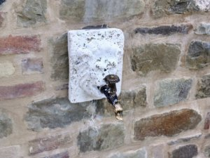 Exterior Faucet and Faceplate